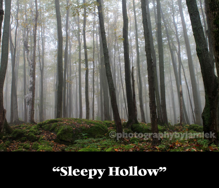 Sleepy Hollow copy.jpg