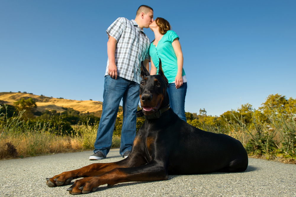 8204_d800a_Lisa_and_Mario_Coyote_Creek_Trail_Morgan_Hill_Engagement_Photography.jpg