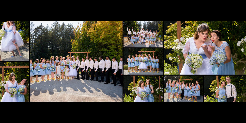 Bridal party formal photos - Private Estate wedding in Sebastopol, CA - by Bay Area wedding photographer Chris Schmauch