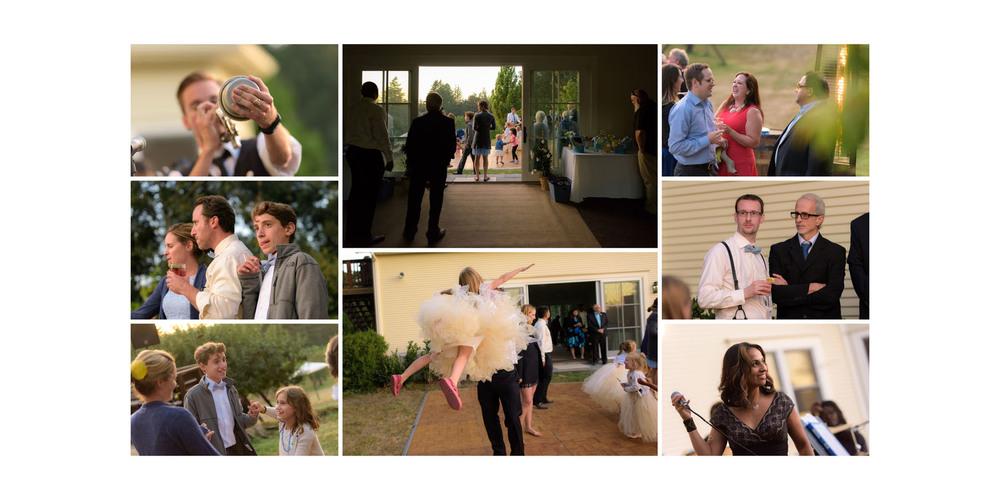 Dancing - Private Estate wedding in Sebastopol, CA - by Bay Area wedding photographer Chris Schmauch