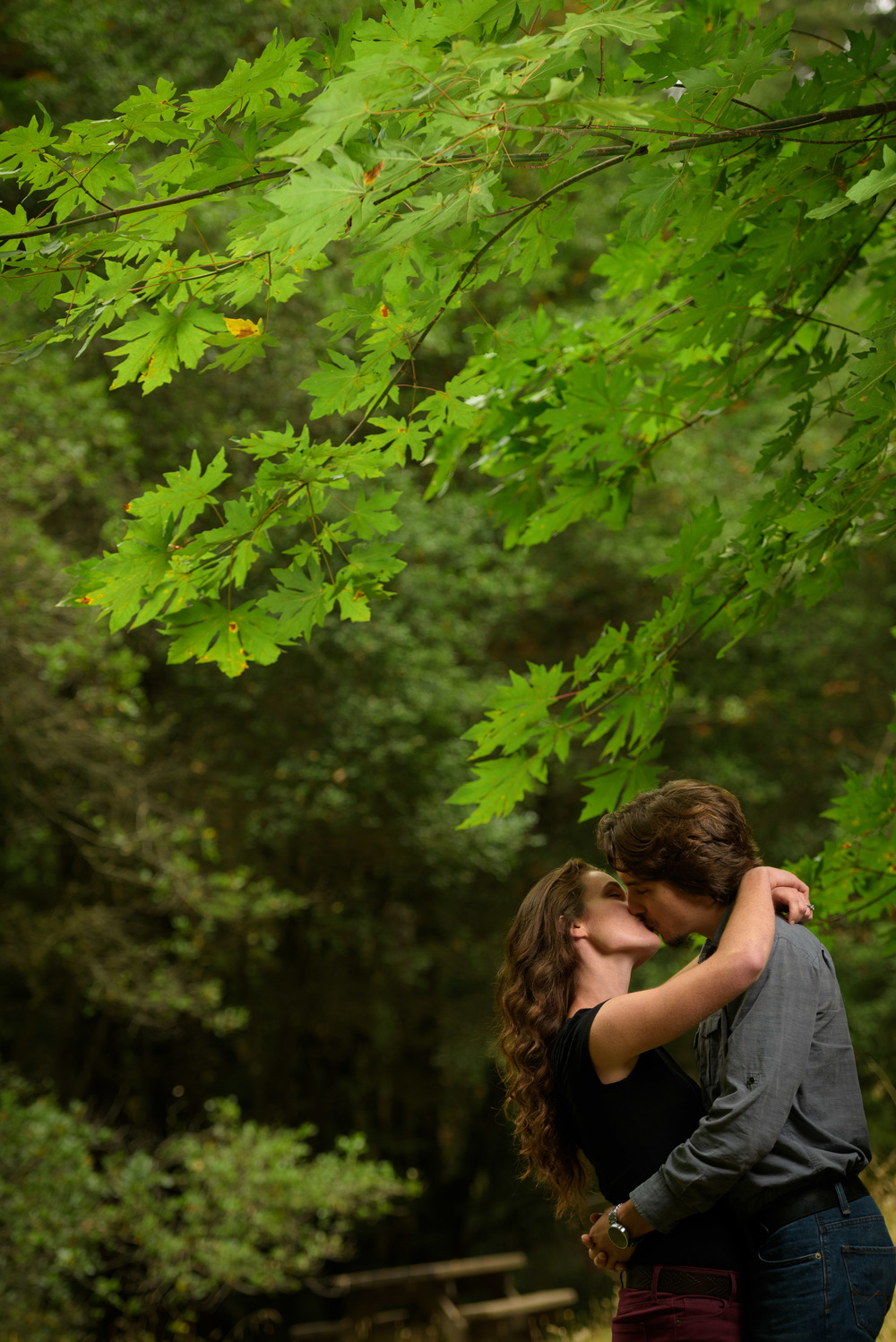 Couple kissing under a gren leafed tree - Engagement Photos in Nisene Marks Forest in Aptos, CA - by Bay Area wedding photographer Chris Schmauch