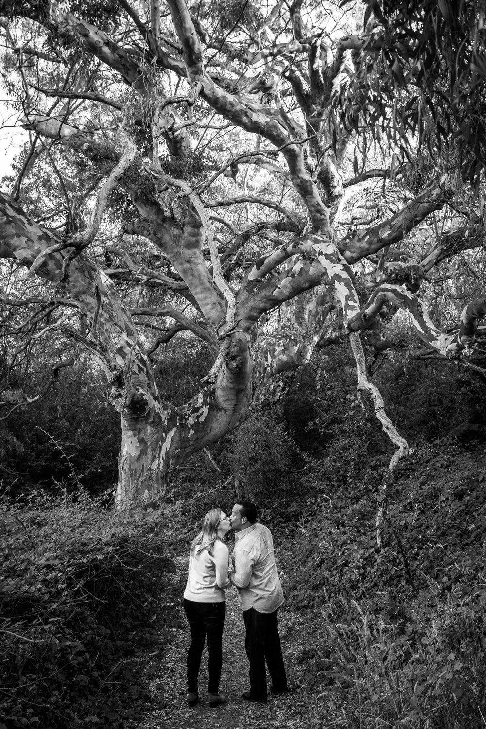 Natural Bridges, Santa Cruz Engagement Photos - Julia and Dennis