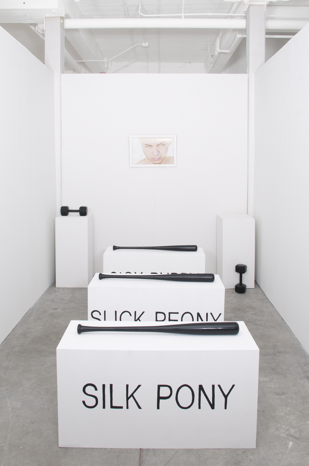 Pleasure Seeker  Installation  (C Print in Artist Frame, 3 Sculptures, 2 Dumbbells) Dimensions Variable  2014