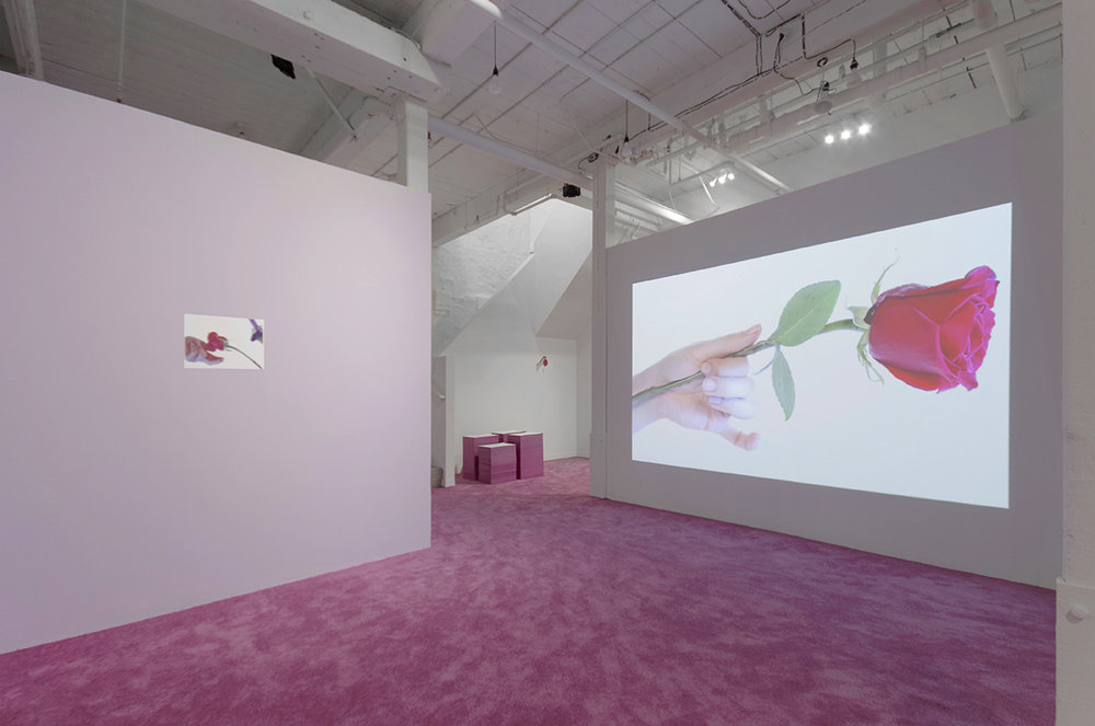 Amy Beecher, Beautiful Beautiful Beautiful Rose, GRIN May 17 - June 24 2017 Installation 13.jpg