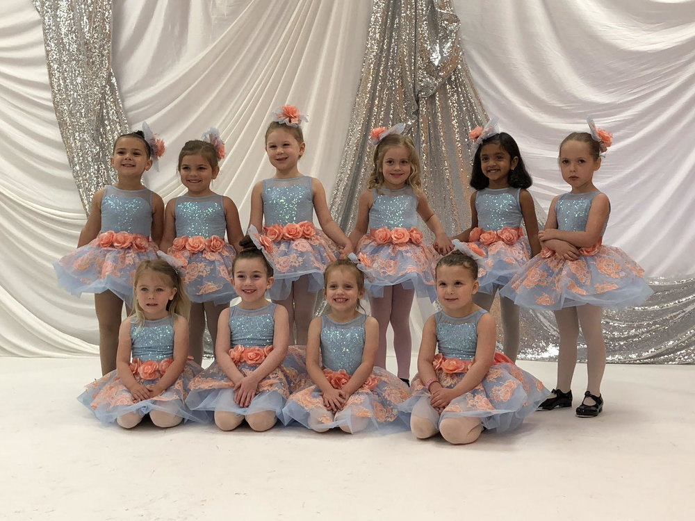 2019-2020 Class Schedule - Our classes run with age groups to allow them to learn effectively alongside their peers!Call Us at 215-896-5605 with any questions, or Email at contact@SynergyDancePA.com
