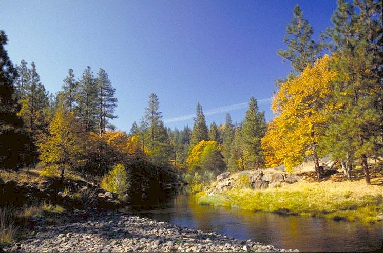 Jenny Creek