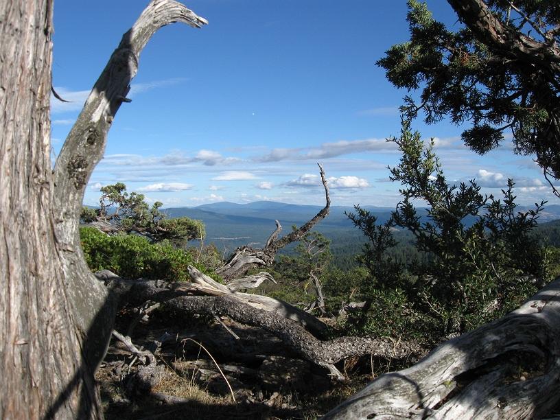 Hobart Bluff with view toward Klamath. BLM photo