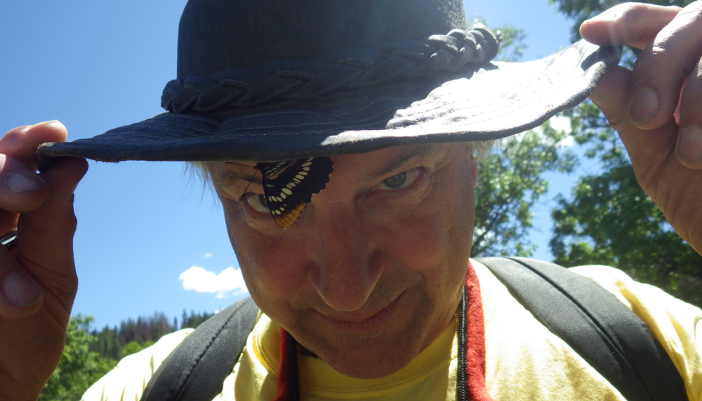 Butterfly on Lepidopterist Dana Ross' Hat Rim During our Bioblitz at the Monument.  2015 File Photo