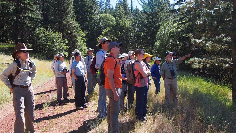 Aquatic ecologist  Michael Parker (r)  shows participants Fredenburg Meadow, a unique wet meadow fed by Jenny Creek and Fredenburg Springs.