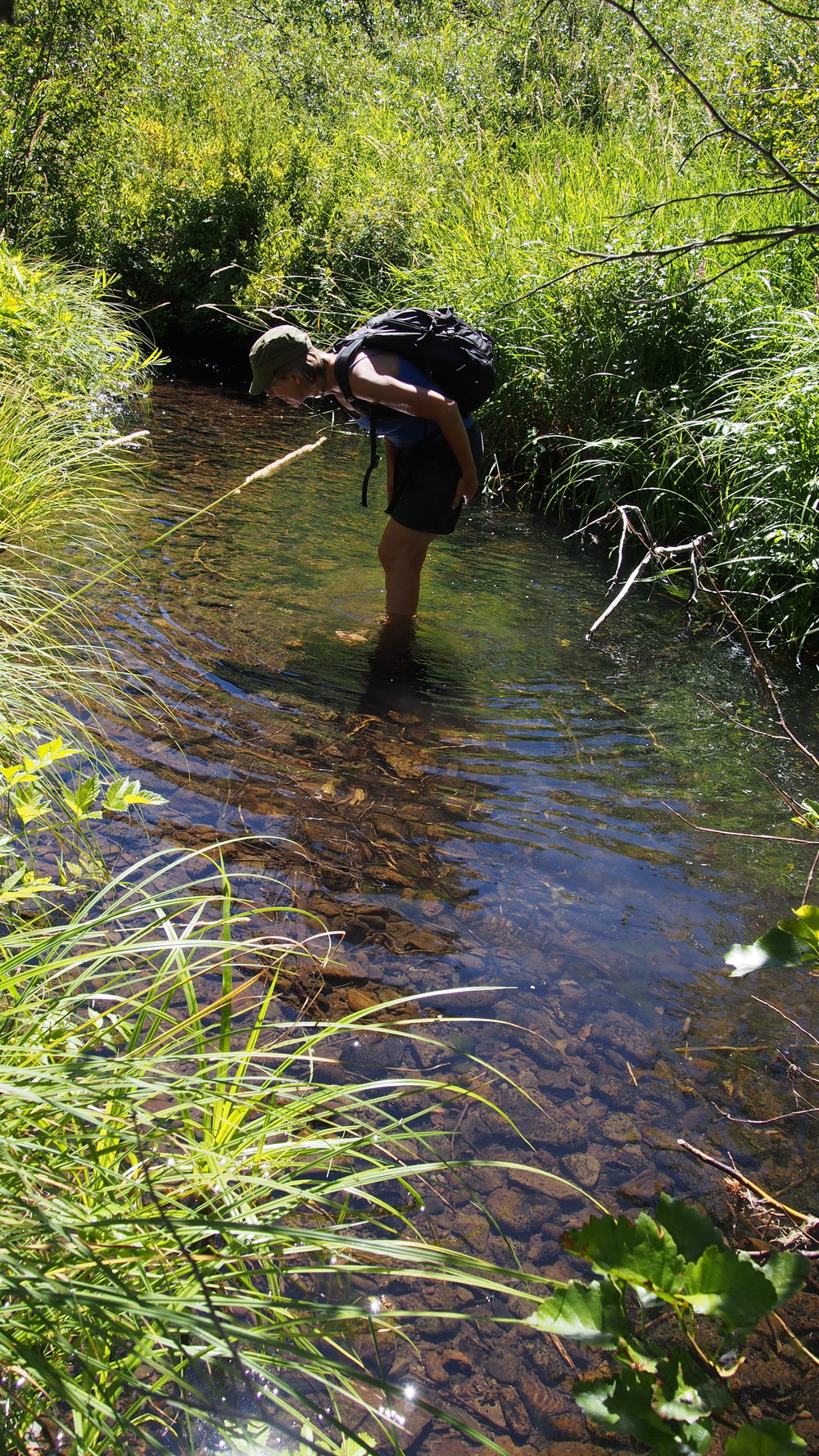 Exploring Jenny Creek while learning about beavers and watersheds.