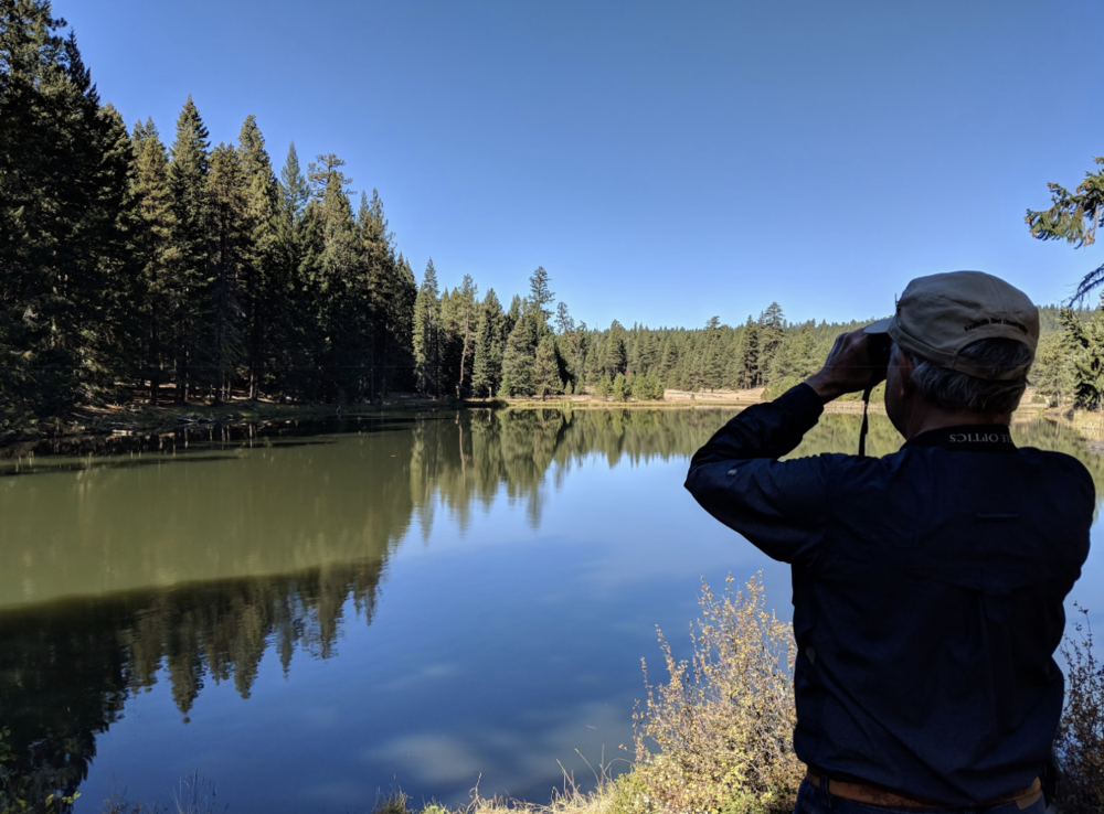 Leader Harry Fuller scans for an elusive dipper across Little Hyatt Reservoir.