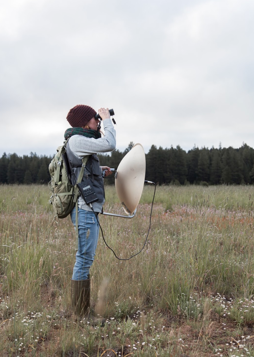 Student Researcher Emily Lind at Lily Glen using a parabolic microphone. PC: Daniel Thiede