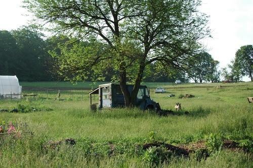 Postal Truck/Shed.