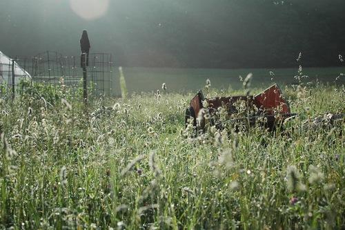 "The ""upstrairs"" fields."