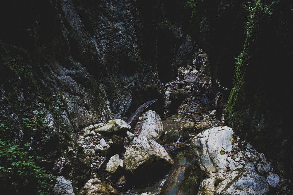 canyon8731.jpg