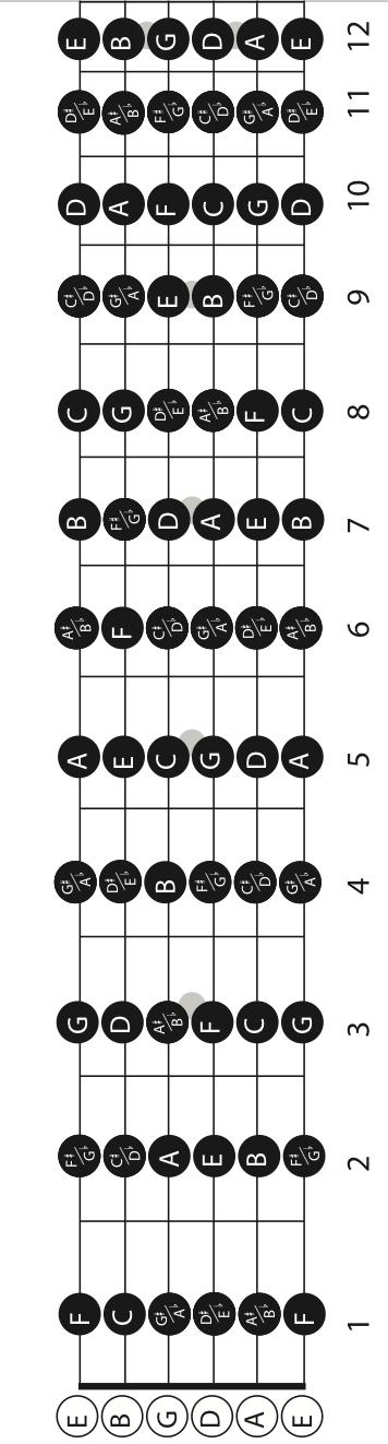 GUITAR FRETBOARD NOTES