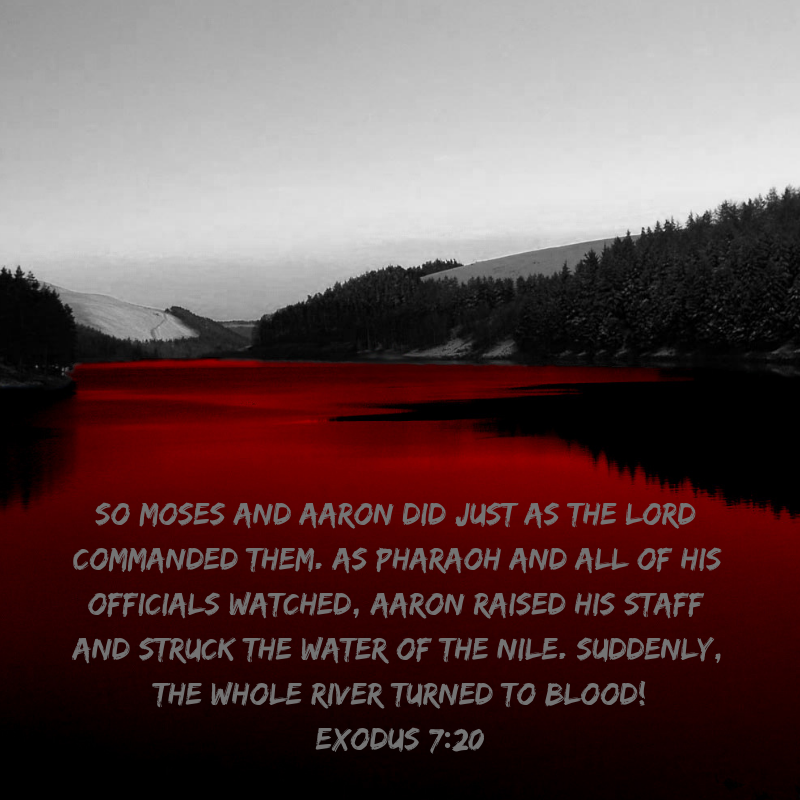 exodus-struggle-blood-and-water-poem.png