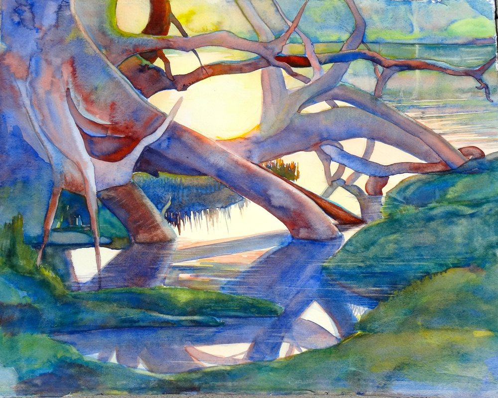 "Okavango, watercolor, 16"" x 22""  (unavailable)"