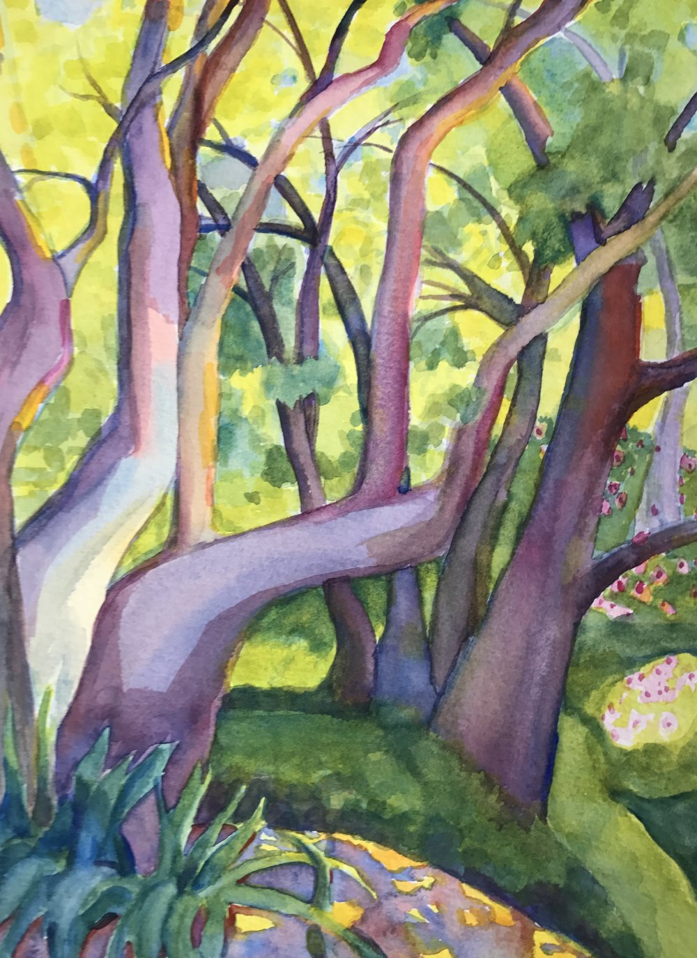 "Into the Woods, watercolor, 12"" x 16"""