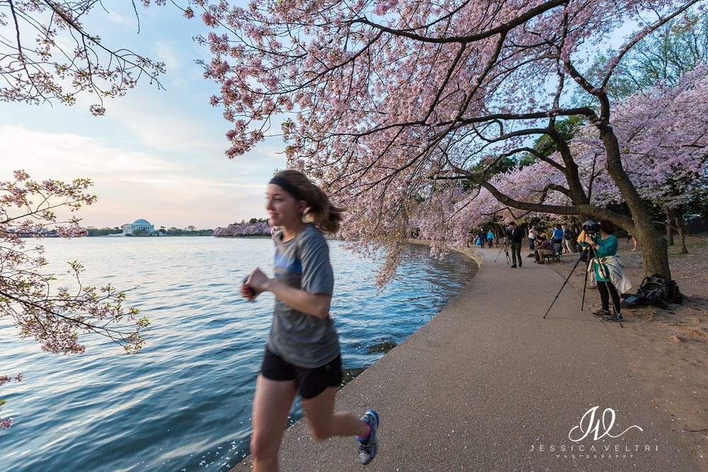 Tidal Basin Runner Jogger Washington D.C. Cherry Blossom
