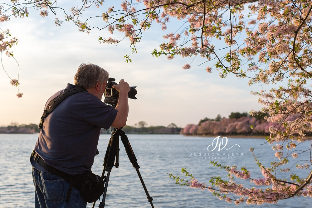Photographer at sunset in Washington D.C. Tidal Basin Cherry Blossoms