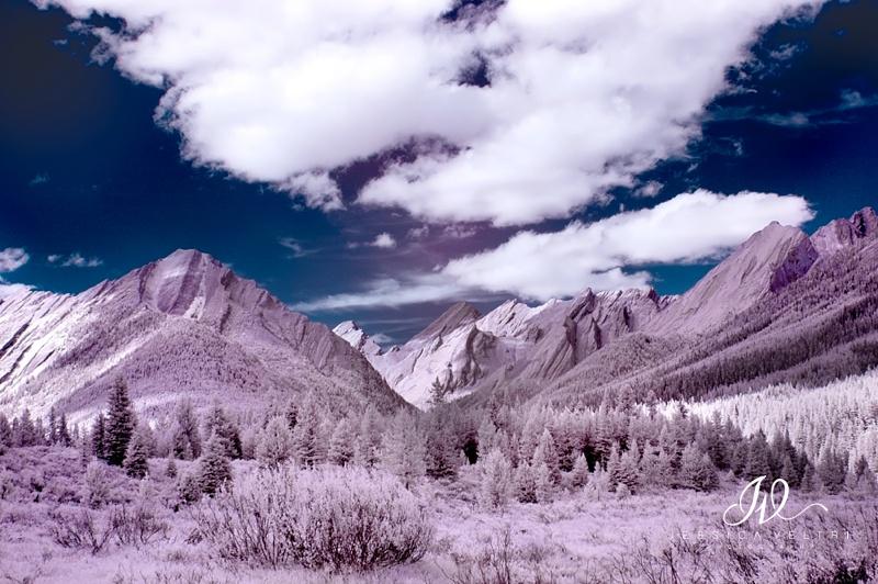 Jessica Veltri -Canada-0003-Edit.jpg
