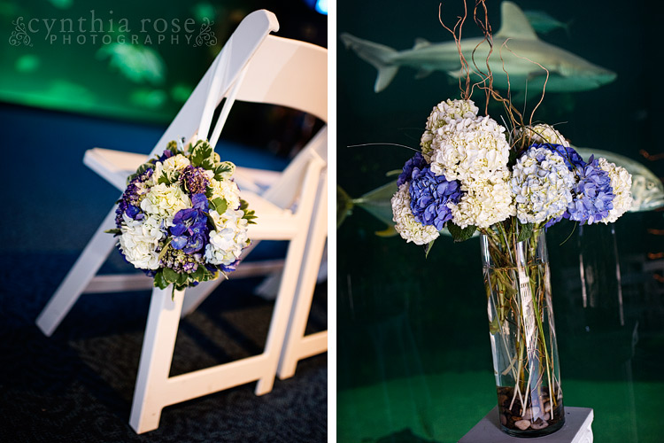 North Carolina Aquarium wedding photographer