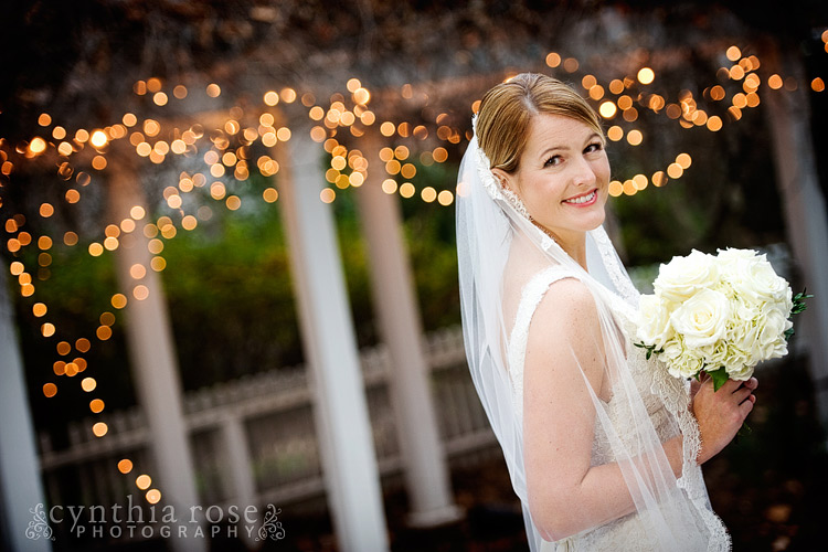 Haywood Hall Raleigh bridal portrait