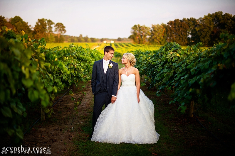 hinnant-vineyards-wedding_0452.jpg