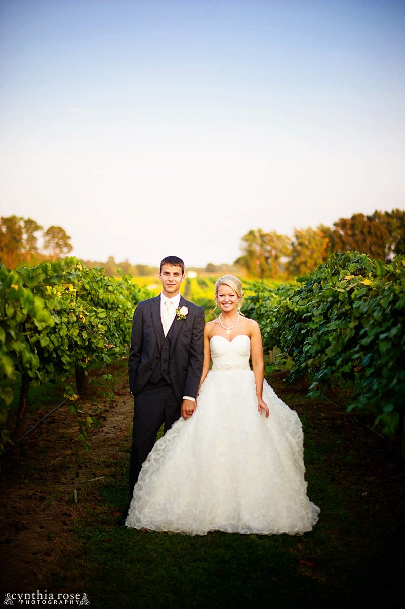 hinnant-vineyards-wedding_0451.jpg