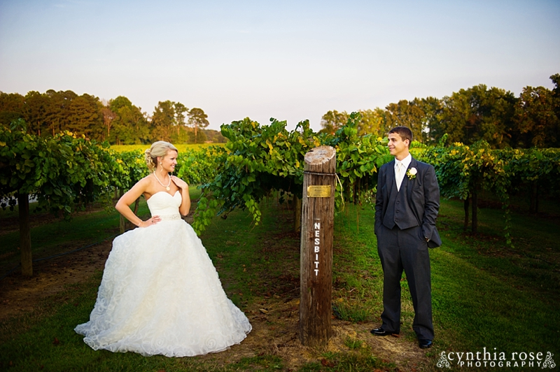 hinnant-vineyards-wedding_0455.jpg