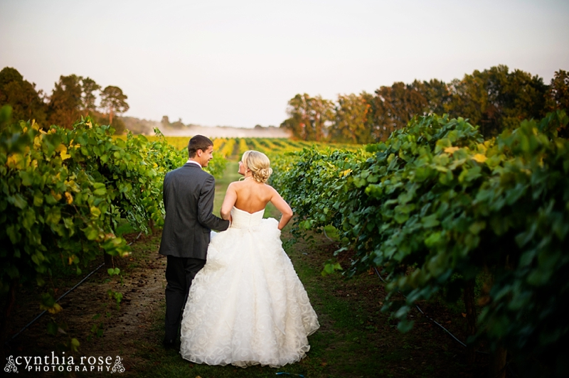 hinnant-vineyards-wedding_0460.jpg