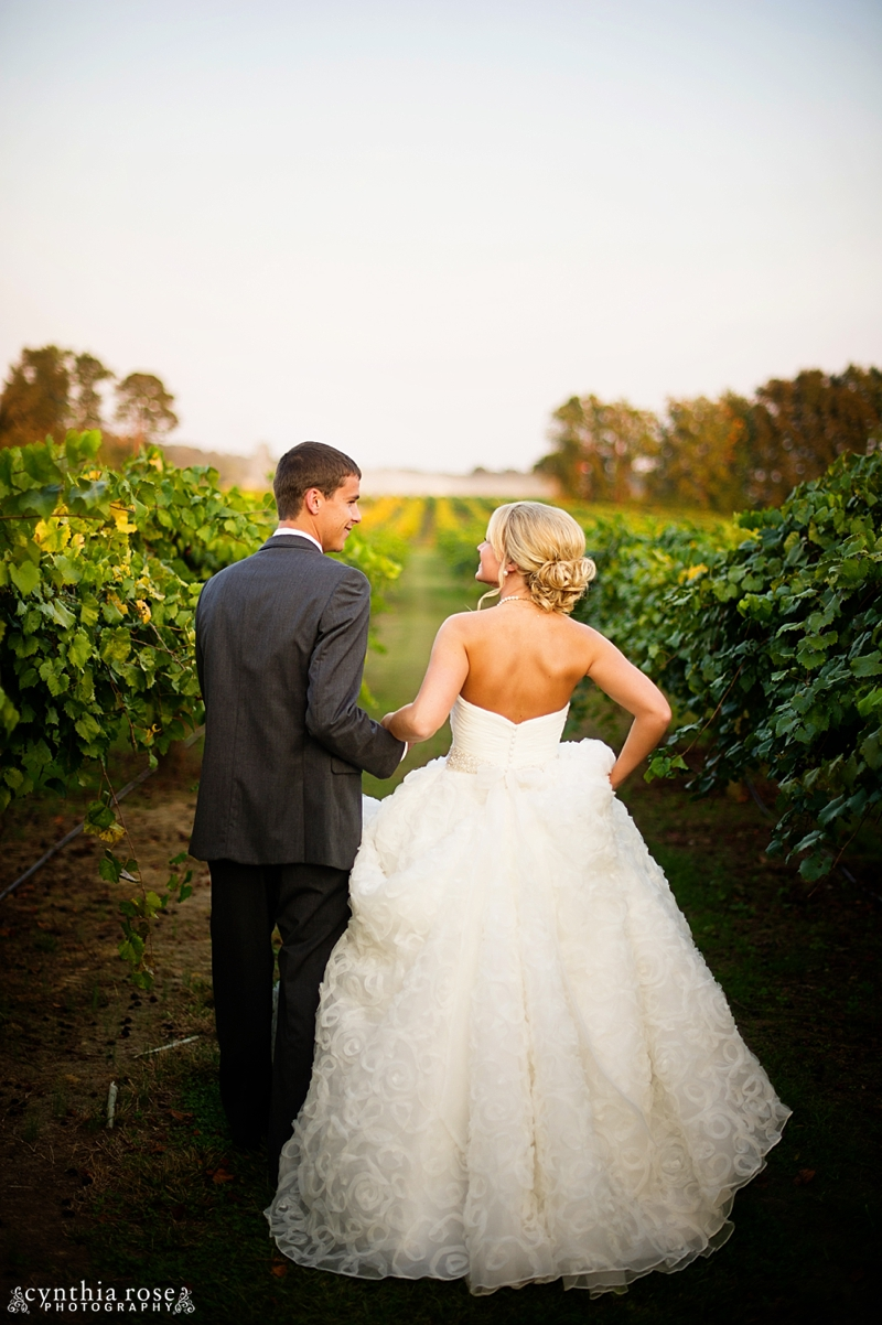 hinnant-vineyards-wedding_0459.jpg