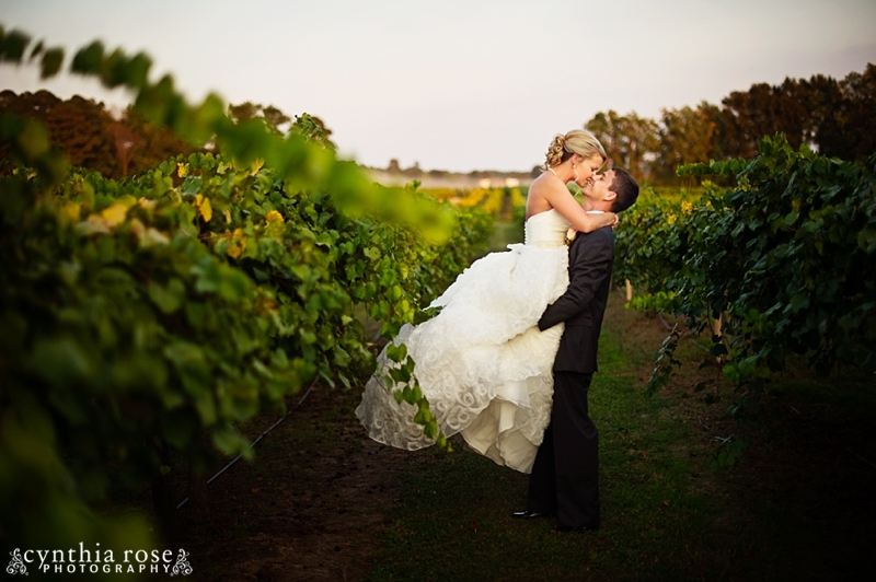 hinnant-vineyards-wedding_0462.jpg
