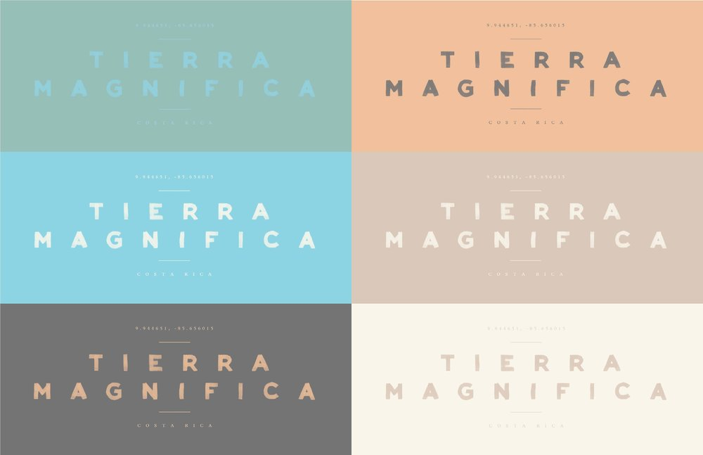 tierra-magnifica-brand-guidelines_Page_18.jpg
