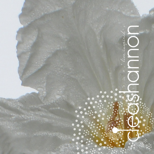in-white.jpg