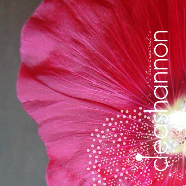 splendor-1.jpg