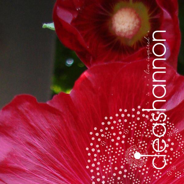 splendor-3.jpg