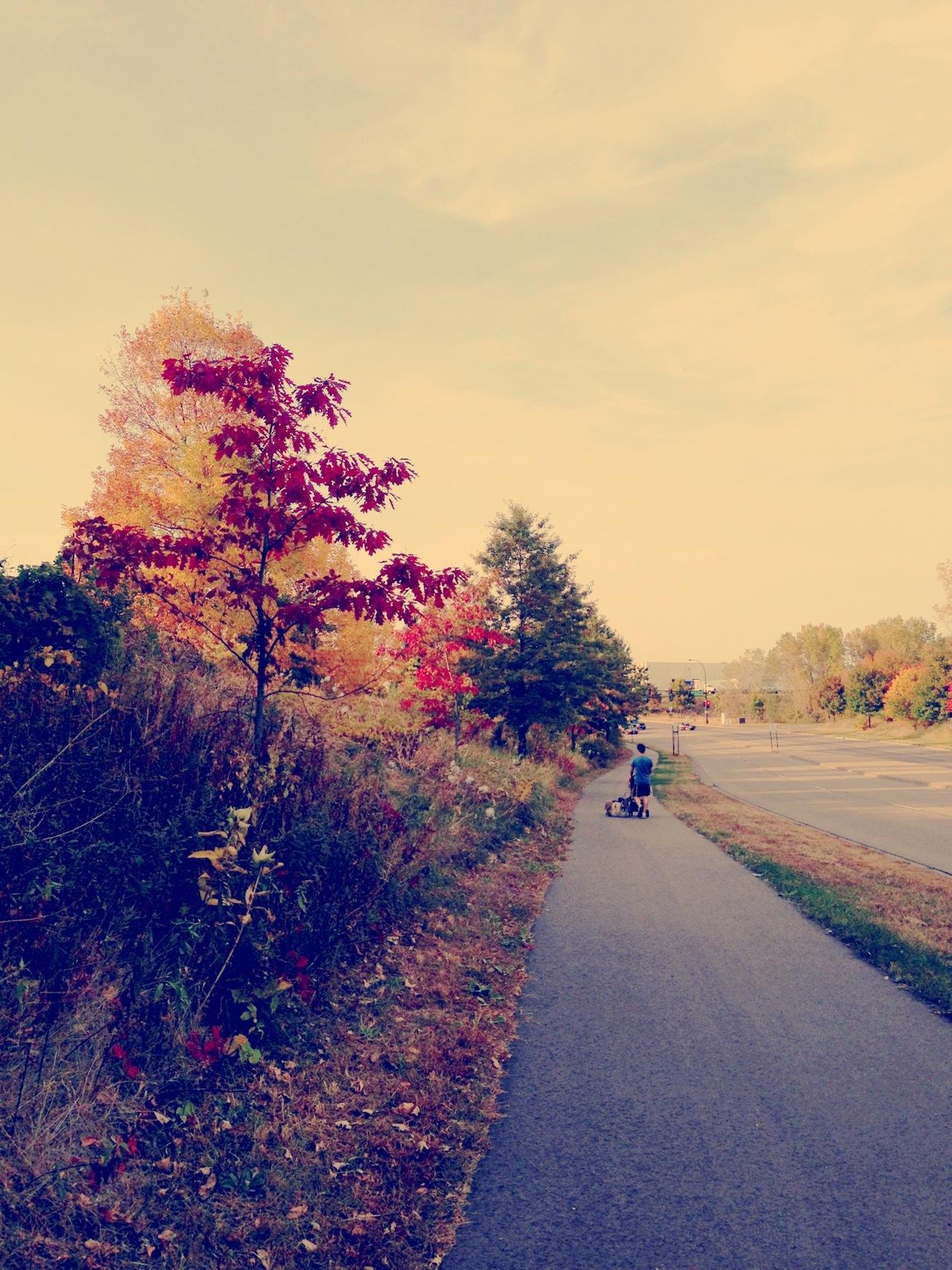 Beautiful fall walk with the girls.