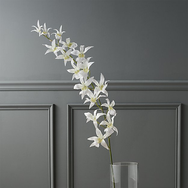 spider-faux-orchid-plant.jpg