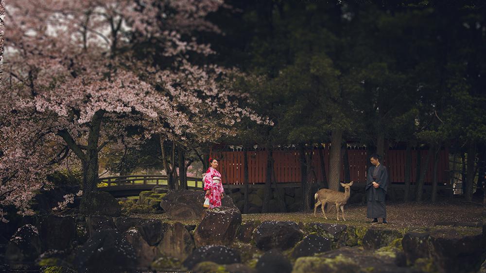 The-Beauty-of-Nara.jpg