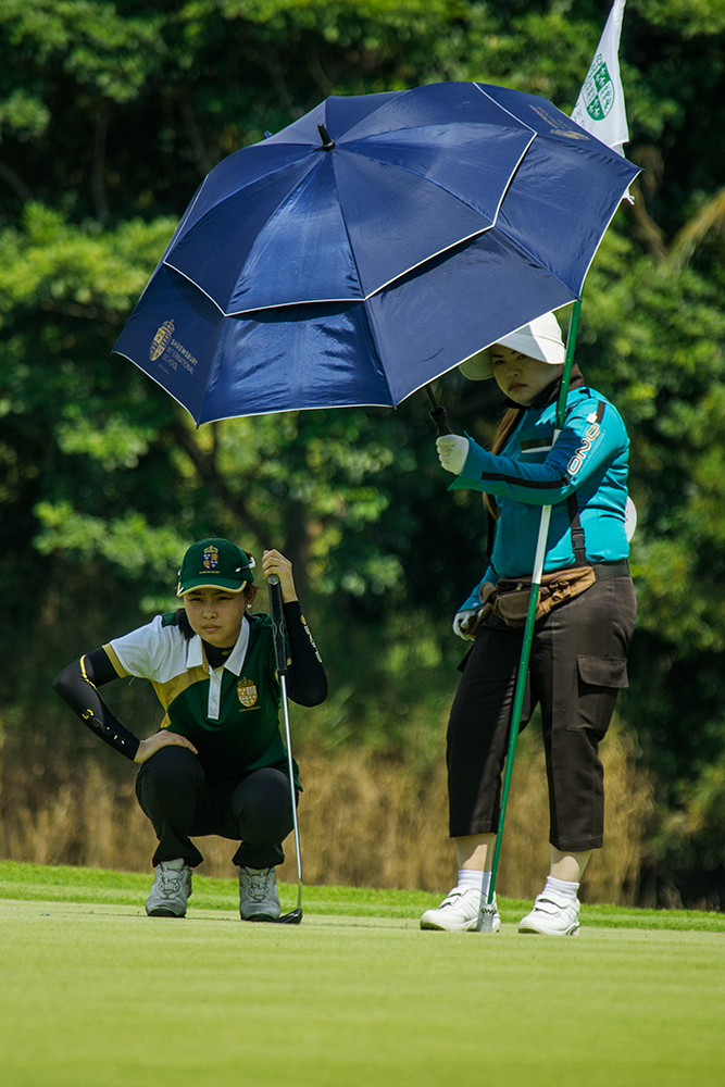 Study and Golf