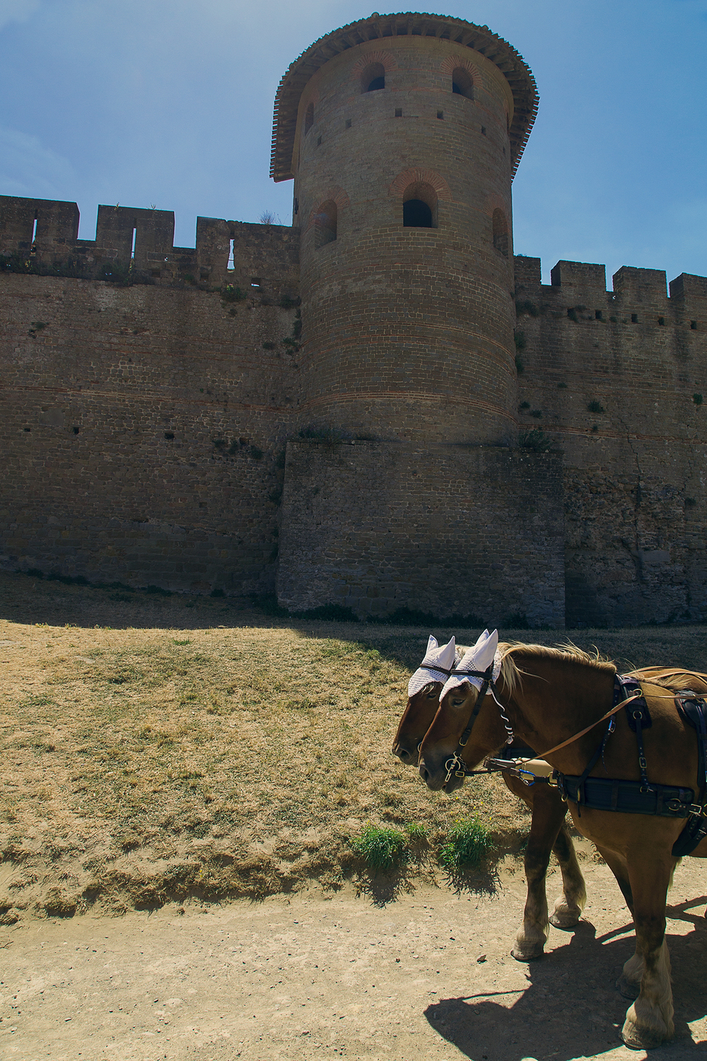 The Horses and Castle