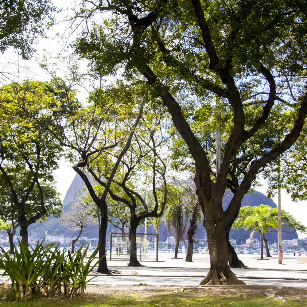 Rua Praia de Botafogo
