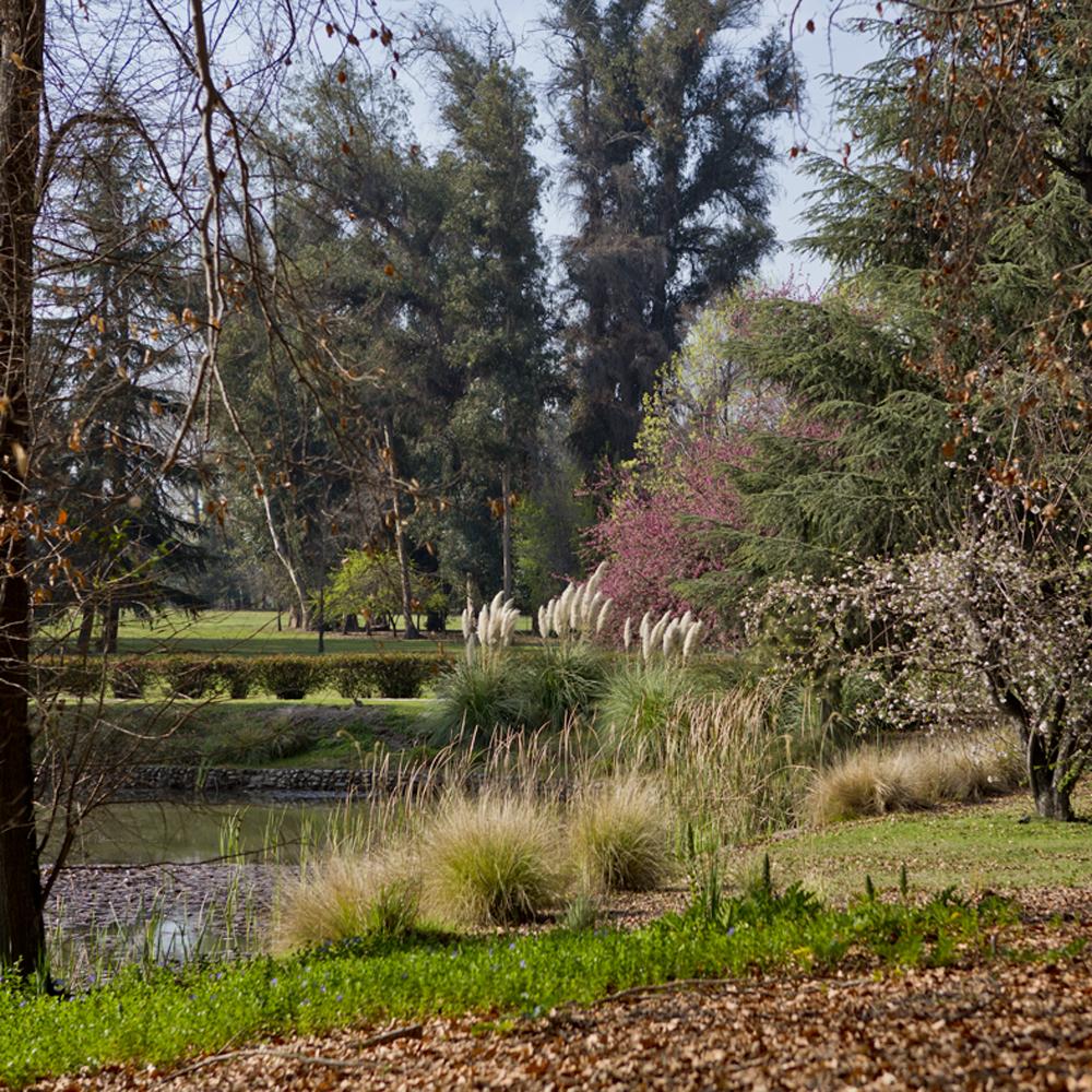 Jardim Concha y Toro, 2