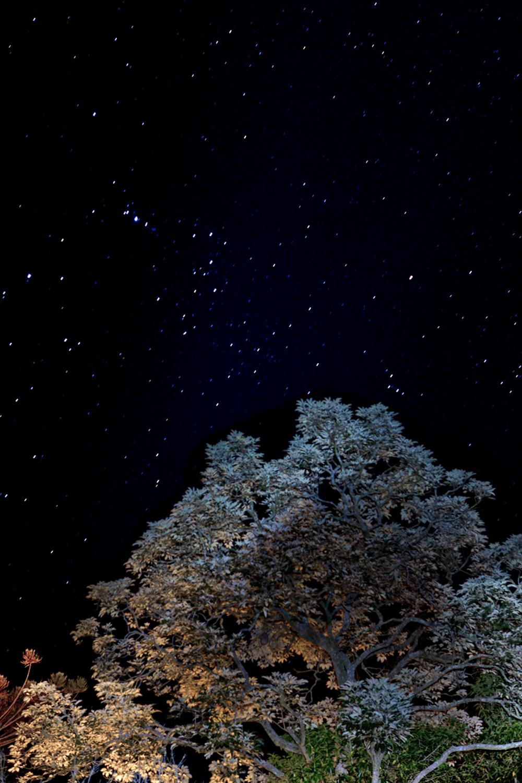 céu estrelado 1.png
