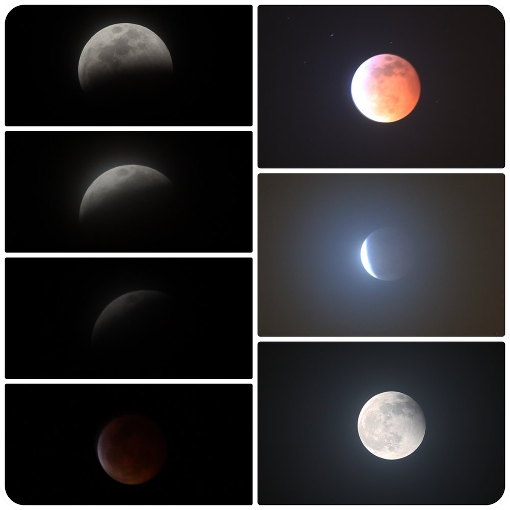 Starting the New Year in Astronomy: Super Blood Wolf Moon, a potential destination for the SLS Program (Alex S. Li in San Diego)