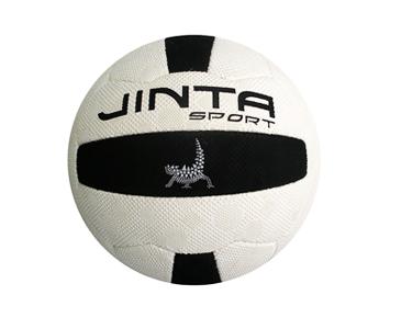 netball_match__60539.1335145541.1280.1280.png