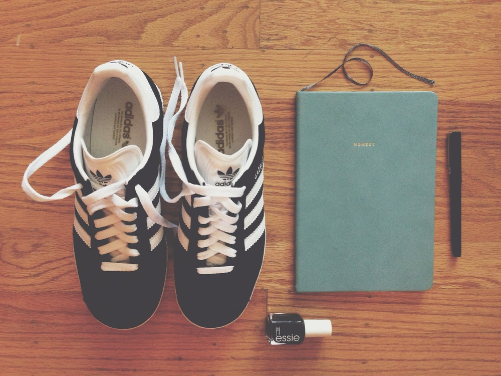 shoes  /  planner  /  polish
