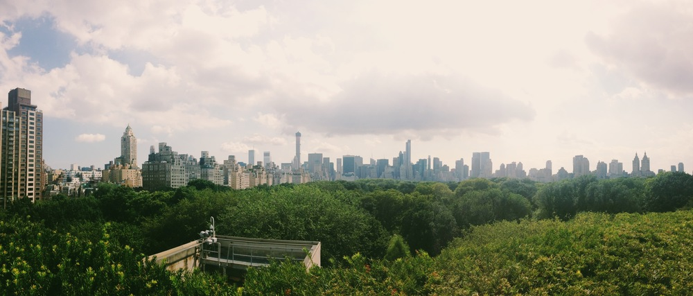 View from the terrace at the Met
